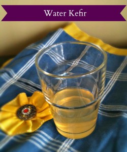 water-kefir-web