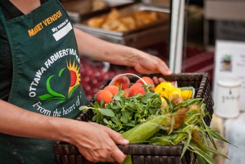 basket of farmers' market produce
